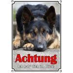 Petsigns Hundeschild Dt. Schäferhund - Ich hab Dich im Blick - Exklusives Alu Warnschild, DIN A5