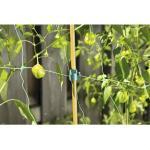 Pflanzenclips FloraSelf Kunststoff Multi 9 Stk