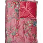 Rosa PIP Decken