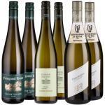 Probierpaket Grüner Veltliner - Weinpakete