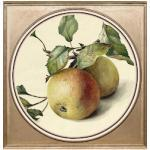 queence Acrylglasbild Äpfel bunt Acrylglasbilder Bilder Bilderrahmen Wohnaccessoires