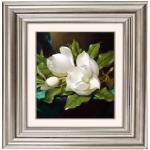 queence Acrylglasbild Blumen weiß Acrylglasbilder Bilder Bilderrahmen Wohnaccessoires