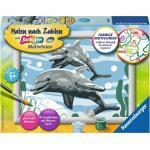 Ravensburger Malen nach Zahlen Freundliche Delfine | Kinder Malset ab 7 Jahre