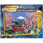 Ravensburger Malen nach Zahlen »Japanische Kirschblüte«, bunt