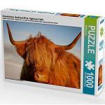 Schottisches Hochland Rind, Highland Cattle Foto-Puzzle Bild von Martina Cross Puzzle