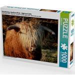 Schottisches Hochland Rind - Highland Cattle Foto-Puzzle Bild von Martina Cross Puzzle