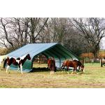ShelterLogic Weidezelt 40,87 m² Run-In-Shed 670 cm x 610 cm