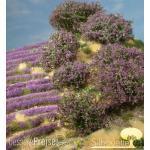 Silhouette 253-06 - Rhododendron violett