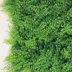 Tenax Synthetische Hecke für Gartenwand, vertikal, Typ Farn, Divy 3D Panel Fern 0,50 x 1 m, für Dekoration und Abschirmung, Grün