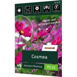 toom Cosmea 'Sensation Mischung'