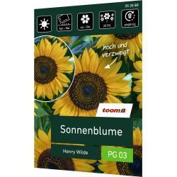 toom Sonnenblume 'Henry Wilde'