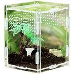 Transparent Acryl Reptilienzuchtbox Zuchtbox Insekten Mini Terrarium Transportbox Transparent Acryl Terrarium Behälter Transparent Reptil Zuchtfall, für Spinnenechsen, Skorpion