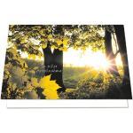 Trauerkarten mit Umschlägen »Anteilnahme«, LUMA KARTENEDITION, 11.5x17.4 cm