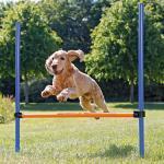 Trixie - Agility-Hürden Set, Hinderniss, Hundesport