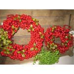 Türkranz Kranz mit Beeren Früchte Ø ca. 25 cm rot SHABBY Weihnachten Deko klein