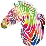 Wandtattoo Afrika Zebra Wandtattoos mehrfarbig